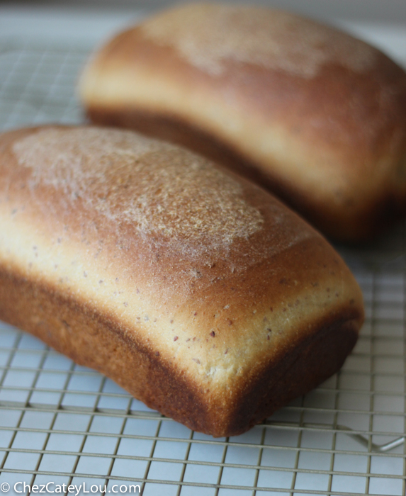 how to make bread with yeast and flour