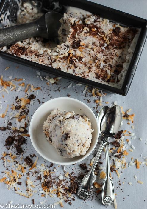Dairy Free Toasted Coconut Ice Cream